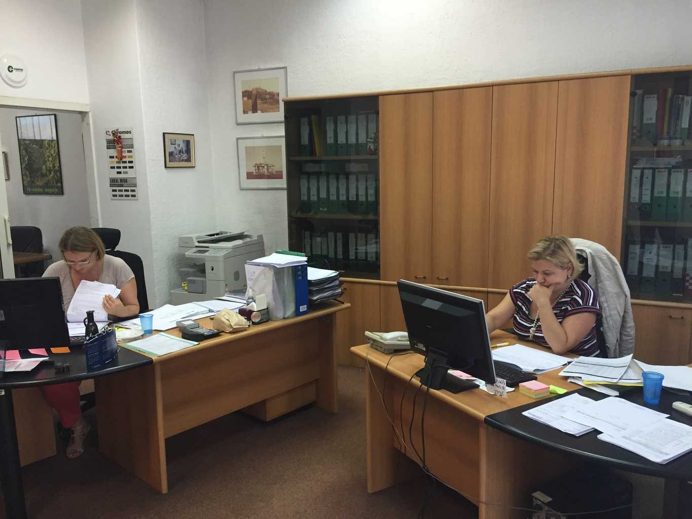 CorteCros office with workers at their desks
